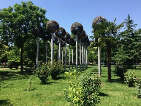 Dandelion art in my favorite local park